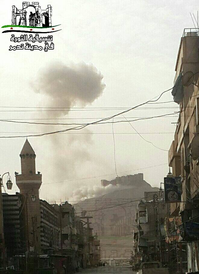 Source: Palmyra Coordination