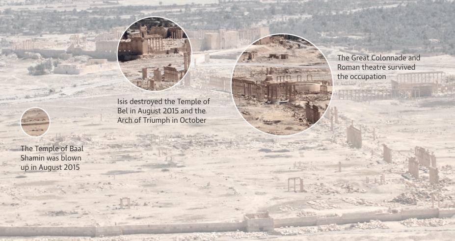 Palmyra. Aleppo Project